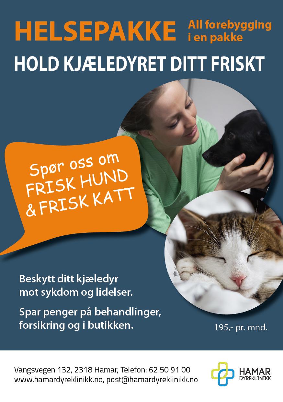 Helsepakker_Hamar Dyreklinikk